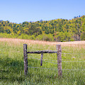 Cades Cove Fence Minimalism by Dan Sproul
