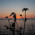 Caernafon Bay At Sunset by James Lavott