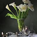 Calla Lilies by Giovanni Allievi