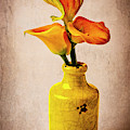 Callies In Yellow Vase by Garry Gay