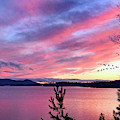 Canadian Geese Over Smith Mountain Lake At Sunset. by James B Roney