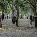 Canberra Cork Plantation 01 by Werner Padarin
