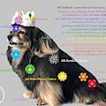 Canine Chakras by Barking Princess