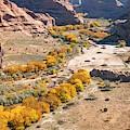 Canyon De Chelley Autumn by Alan Toepfer