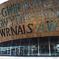 Cardiff Photo 7 by Jenny Potter