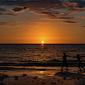 Carefree Days Of Summer by Ann Marie DiLorenzo