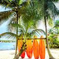 Caribbean Island Mood by Debra and Dave Vanderlaan