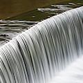 Carolina Water Splash by Dale Powell