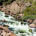 Cascading Whitewater In Eleven Mile Canyon by Steve Krull