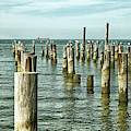 Casino Pilings At Cape Charles Virginia by Bill Swartwout Photography
