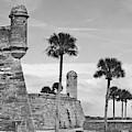 Castillo De San Marcos Bw by D Hackett