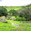 Castle Rock Trailhead by Scott McGuire