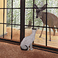 Cat Meets Deer by Karen Zuk Rosenblatt