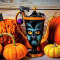 Cat Pitcher With Pumpkins by Garry Gay