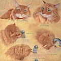 Cat Splash by Karen Zuk Rosenblatt