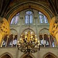 Cathedral Notre Dame Chandelier by Brian Jannsen