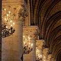 Cathedral Notre Dame Columns II by Brian Jannsen