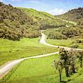 Catlins New Zealand Back Roads by Joan Carroll