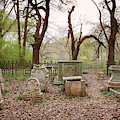 Cemetery Gates by Susan Rissi Tregoning