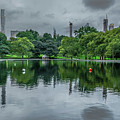 Central Park Reflections by Angeles Gutierrez