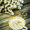 Chamomile Tea by Susan Maxwell Schmidt