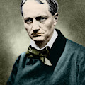 Charles Baudelaire, French Writer, Photo by French School