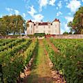 Chateau Lagrezette by Silva Wischeropp