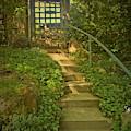 Chateau Montelena Garden Stairway by Joyce Dickens