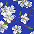 Cherry Blossoms Blue Sky Floral Impressionism by Irina Sztukowski