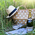 Chic Picnic by Top Wallpapers