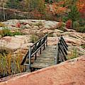 Chikanishing Trail Boardwalk II by Debbie Oppermann