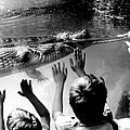 Children Reach Towards The Gharial by New York Daily News Archive