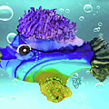 Chip Funky Fish by Christine Dekkers