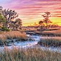 Chisolm Island Marsh Sunset by Scott Hansen