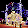 Christmas Pavillion by Susan Rissi Tregoning