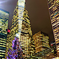 Christmas Tree Colors At Bryant Park New York City by John Rizzuto