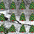 Christmas Trees by Patrick J Murphy