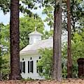Church In The Woods by Cynthia Guinn