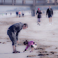 Clearwater Beachcombing by Jeff Phillippi