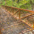 Close Up Of Bridge At Pine Quarry Park by Jeremy Lankford