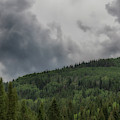 Cloud Topped Aspens by Mitch Johanson