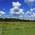 Clouds Surround The Landscape by Terri Morris