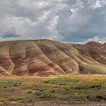 Cloudy Painted Hills by Matthew Irvin