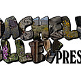 Coachella Valley Preserve Big Letter by Colleen Cornelius