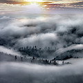 Coastal Range Ocean Fog by Leland D Howard