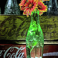 Coke And Indian Blanket Still Life by JC Findley