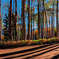Colorado Backcountry Drive Panorama 36 X 12 By Olena Art by OLena