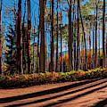 Colorado Backcountry Drive Panorama 36 X 12 By Olena Art by OLena Art - Lena Owens