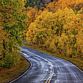 Colorado Fall Country Road by John De Bord