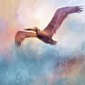 Colorful Flight by Jai Johnson